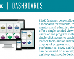 PEAK Is a State-of-the-Art Tool that Reduces Complexity